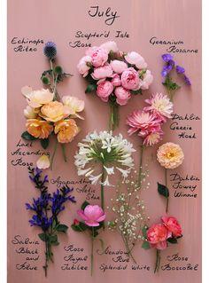 July Flowers, Flowers London, Pretty Flowers, Cut Flower Garden, My Flower, Geranium Rozanne, London Garden, Bouquet, Flower Names