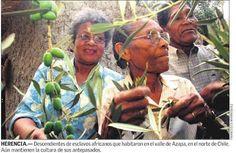 Mujeres afrodescendientes en el Valle de Azapa. Norte de Chile
