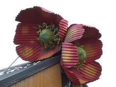 Giant Corrugated Iron Flowers in Tirau | Flickr - Photo Sharing! Visit and Like our Facebook Page https://www.facebook.com/pages/Rustic-Farmhouse-Decor/636679889706127