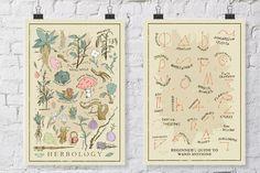 Neu!!!  Jetzt können Sie bündeln und die beiden beliebten Herbology print bekommen drucken und Wand Bewegungen gleichzeitig Geld sparen! Diese