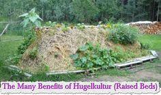 The Many Benefits of Hugelkultur (Raised Beds)