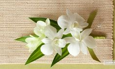 For moms - Pin On White Dendrobium Orchid - pin-on corsage of Classic White dendrobium orchid blooms.