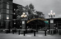 University of Michigan Stadium, Angela Hanekamp, www.angelahanekampphotography.photoreflect.com/