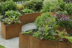 A raised semicircular bed is ideal for creating a small, private space in a larger yard. Instead of filling it with annuals or grasses, try a mix of edibles. The blend of greens in the foliage provides visual interest against the rust color of the planters. The raised beds offer high style and easy access to the ripening crops.