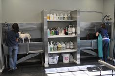 -repinned- Dog Grooming Tubs