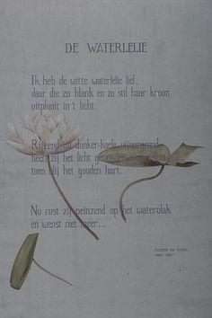 Sleep Medicine, Word Art, Wise Words, Texts, Van, Letters, Writing, Lotus Flower, Dutch
