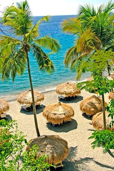 Beach huts at Anse Chastanet resort in St. Lucia - Caribbean