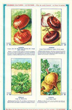 30 Gorgeous Inspirational Vintage Illustrations