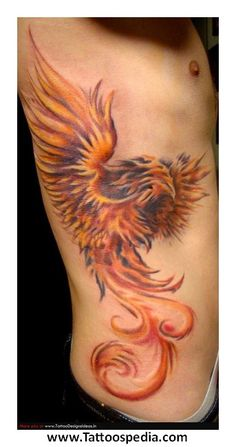 Phoenix Tattoo Male 5