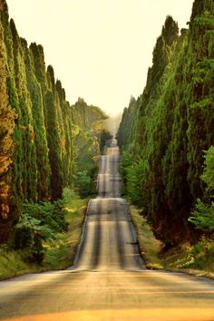 Haven't been to the Tuscan countryside yet, but I NEED to go. Any recommendations?