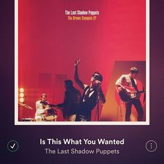 """alessia.wilde/2016/11/21 23:55:48/""""..I was ..Rin Tin Tin."""" 🎶  Remembering Leonard Cohen with this amazing cover, of one of the most fabulous duo, the best British Music gives us! 🎸❤ #thelastshadowpuppets #mileskane #alexturner #british #music #english #leonardcohen #cover #musiclover #duo #amazing #instrument #playing #guitar #singer #voice #best #song"""