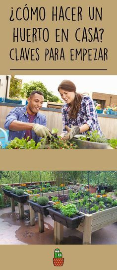 It does not matter if you want to make a garden in the garden, an urban garden on a large terrace or a vertical garden on your balcony, these are the KEYS TO START it . Eco Garden, Home Vegetable Garden, Natural Garden, Garden Plants, Back Gardens, Houseplants, Compost, Beautiful Gardens, Shrubs