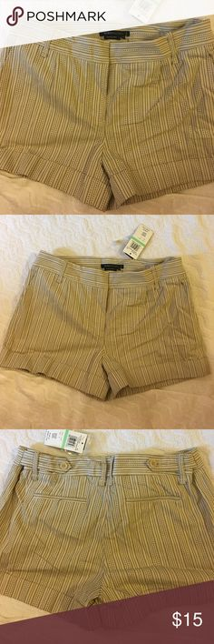 BCBGMAXAZRIA Shorts BCBGMaxAzria Shorts size 8. New with tags BCBGMaxAzria Shorts
