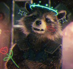 Rocket Raccoon, Racoon, Avengers Infinity War, Guardians Of The Galaxy, Marvel Comics, Pixar, Saga, Crushes, Movie