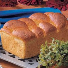 "Favorite Buttermilk Bread Recipe -""Crusty on the outside and tender on the inside, this bread is my family's all-time favorite,"" reports Michele Surgeon of Medford, Oregon. ""Honey helps the crust bake up golden brown, wheat germ adds extra nutrition and the wonderful flavor will likely make it your family's standard for homemade bread, too."""