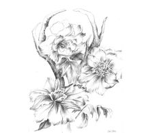 How cool is this idea? Instantly download the file of an artist's original pencil drawing. Then, send to your local print shop to make into wall art. Simple, Inexpensive. Lovely.Antlers With Peony Still Life Flowers pencil by lunapeonyart