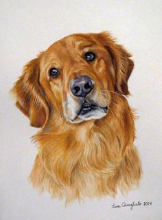My Gallery is growing! Will your Pet be part of it? | Fine art and portraits by Lena Quagliato