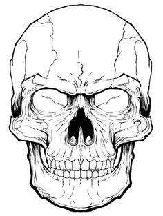 068 - Skull Timelaspe by Joshua M. Smith, via Behance