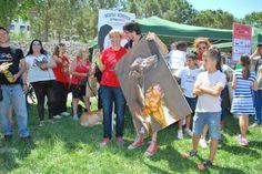 Cuadro para evento solidario de Galgos 112 en el parque de Cabecera en Valencia. Mayo 2015 Sorteo/Rifa del cuadro pintado en directo.
