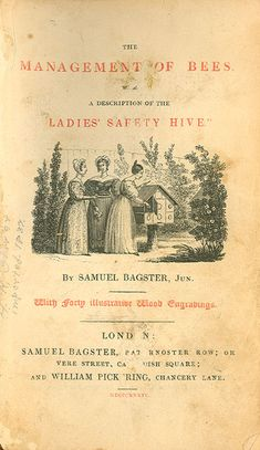 Ladies' Safe Hive - Management of Bees
