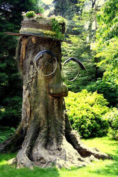 31 Tree Stumps Ideas For Home Decorating And Backyard Designs  Buzzinn