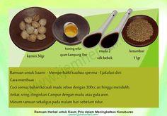Ramuan-Kesuburan-Pria-17 Recipe Cards, Islam, Medicine, Beef, Recipes, Food, Meat, Meal, Medical