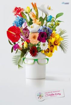 Optivisão / Hello Kitty: Flowers