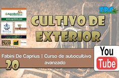 Cultivo de exterior (tierra)   Curso de Autocultivo Avanzado (CAA) – 20