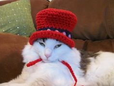 Patriotic Red and Blue Top Hat for Pets Cats and Dogs Handmade Crochet | DefiantCreations - Pets on ArtFire