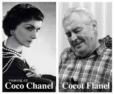 Funny Pictures, Funny Pics, Coco Chanel, Jokes, Lol, Humor, Animals, Psychology, Laughing So Hard