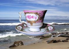 Cup and Saucer with N Crown over it and Decore a Sevres Roses White Gold Violet  #DecoreaSevres