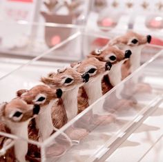 Cute little fawns and much more for Christmas at Chocolat Show 🎄 All decorations available in store & online!#christmasdecorations #chocolatshow #christmastime