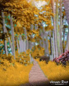 Blur Image Background, Background Wallpaper For Photoshop, Desktop Background Pictures, Blur Background Photography, Studio Background Images, Light Background Images, Editing Background, Photo Background Editor, Picsart Background