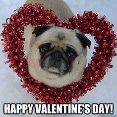 Valentine's Love!
