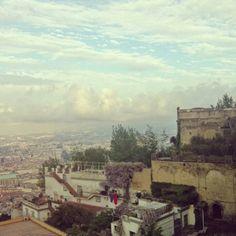 Wisteria in Naples!