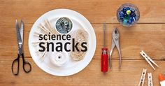 Hungry for exciting activities based in mind-blowing scientific phenomena? Try our Science Snacks: bite-sized versions of Exploratorium exhibits and other investigations that you can build at home or in your classroom using cheap, readily available materials.