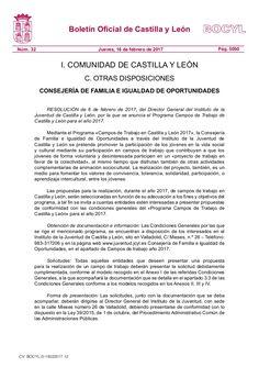RESOLUCIÓN de 6 de febrero de 2017, del Director General del Instituto de la Juventud de Castilla y León, por la que se anuncia el Programa Campos de Trabajo d…