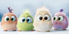 'The Angry Birds Movie' arrives in May, but as a little holiday treat, the movie has unveiled the adorable not-so-angry Hatchlings as they attempt to sing 'Deck The Halls' in this little video.