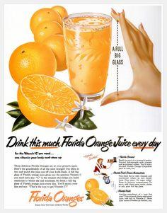 Florida Oranges - 1952