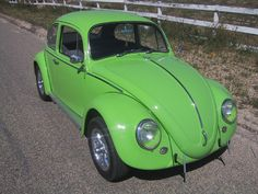 I love old bugs