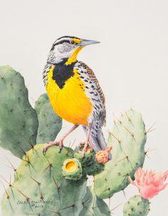 Eastern Meadowlark -- Watercolor by Cheryl Ann Kinney