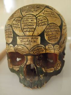 Franz Joseph Gall, an Austrian doctor, came up with the idea of 'craniology' (later termed 'phrenology' by Gall's assistant Johann Spurzheim) after examining countless cadavers and in particular the shape and form of their heads. Gall demarcated the human skull into 27 sections, each corresponding to a behavioural characteristic that he called 'organs' (the number of 'organs' would later vary with various practitioners, doctors and scientists inventing many more).