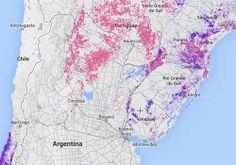 Global Forest Watch: supervisando 'online' la destrucción de todos los bosques del mundo  El planeta Tierra ha perdido el equivalente a a una extensión de 50 campos de fútbol perdidos cada minuto de cada día durante 12 años. Es decir: 2,3 millones de kilómetros cuadrados (230 millones de hectáreas) de superficie arbórea entre 2000 y 2012. + info: www.barrameda.com.ar/dp/