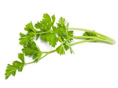 Health benefits of celery are - they are rich in vitamin C, they lower cholesterol, prevent cancer, reduce high blood pressure, and promote health.Celery contains amino acids, boron, calcium, chlorine, essential fatty acids, folate, inositol, iron, magnesium, manganese, phosphorous, potassium, selenium, sulfur , zinc, vitamin A, vitamin B1, vitamin B2, vitamin B3, vitamin B5, vitamin B6, vitamin C, vitamin E and vitamin K. Celery is also a salad ingredient, which contains fiber.