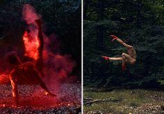 Dança na Floresta