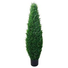 Plastic Green Iron Frame Romano 41-inch Indoor/ Outdoor UV Resistant Cypress Tree -- Want to know more, click on the image.