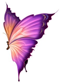 Красивые рисованные бабочки в PNG.. Комментарии : LiveInternet - Российский Сервис Онлайн-Дневников