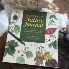 Keeping A Nature Journal by C. Leslie & C. Roth Book