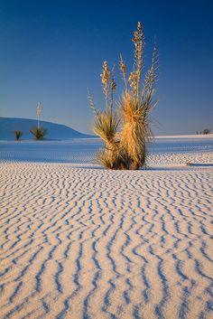 Nature - White Sands National Monument, New Mexico Beautiful World, Beautiful Places, Amazing Places, Places Around The World, Around The Worlds, Wow Photo, White Sands National Monument, Land Of Enchantment, Amazing Nature
