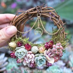 Tiny Plant Gallery – Botanical Bright - Products for Plant Lovers Diy And Crafts, Arts And Crafts, Deco Nature, Wiccan Crafts, Succulent Wreath, Fete Halloween, Deco Floral, Nature Crafts, Diy Gifts
